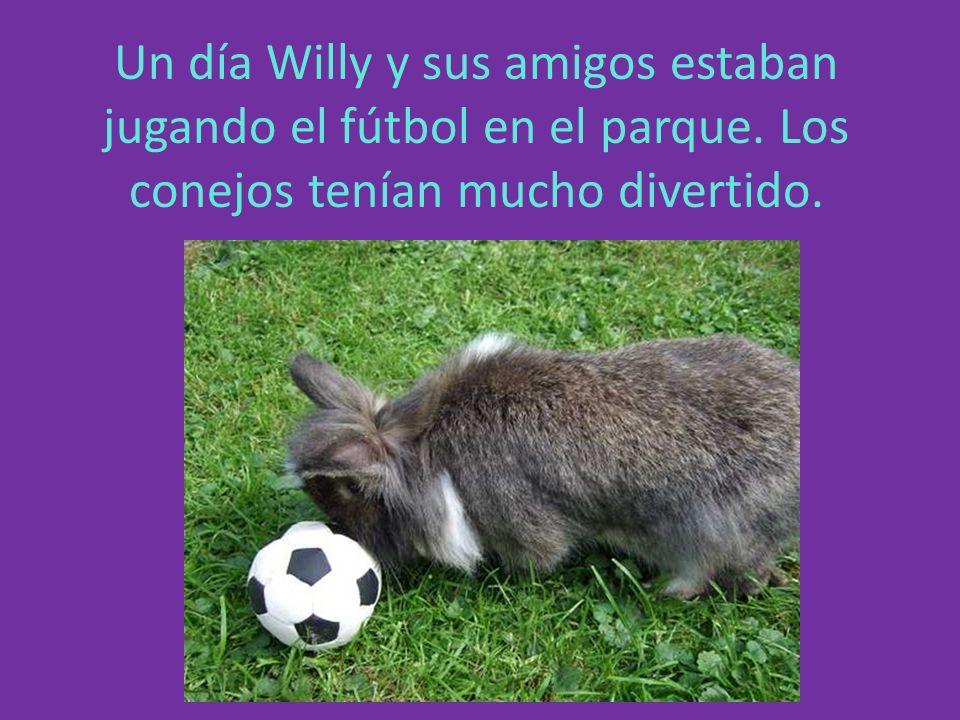 Un día Willy y sus amigos estaban jugando el fútbol en el parque