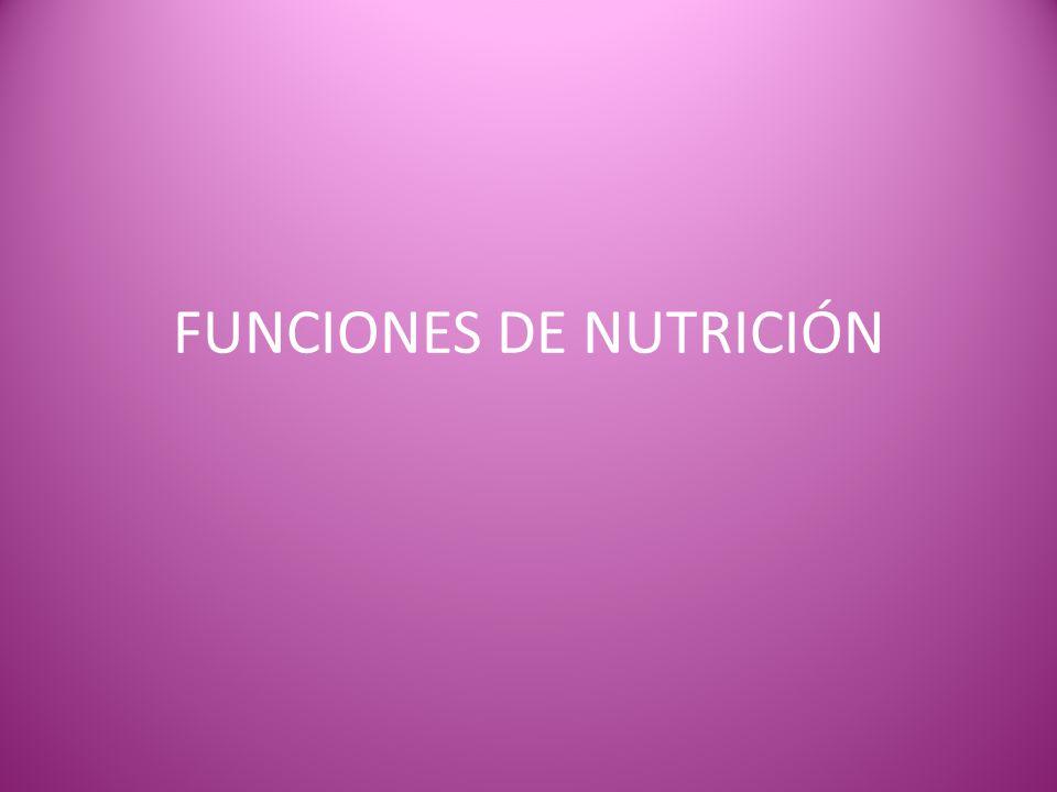 FUNCIONES DE NUTRICIÓN