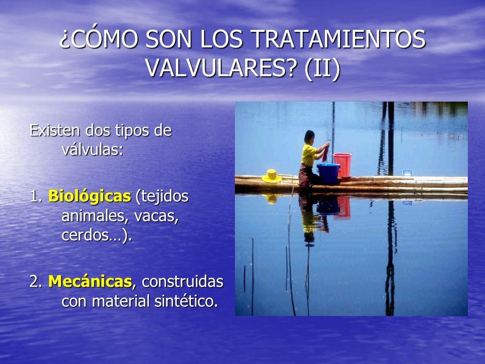 ¿CÓMO SON LOS TRATAMIENTOS VALVULARES (II)