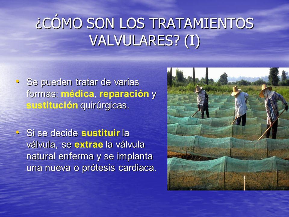¿CÓMO SON LOS TRATAMIENTOS VALVULARES (I)