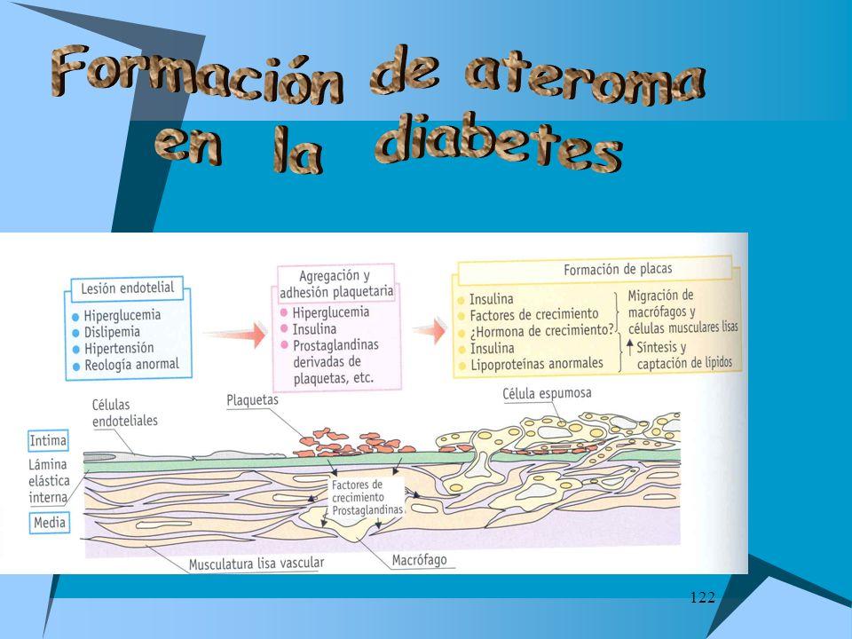 Formación de ateroma en la diabetes