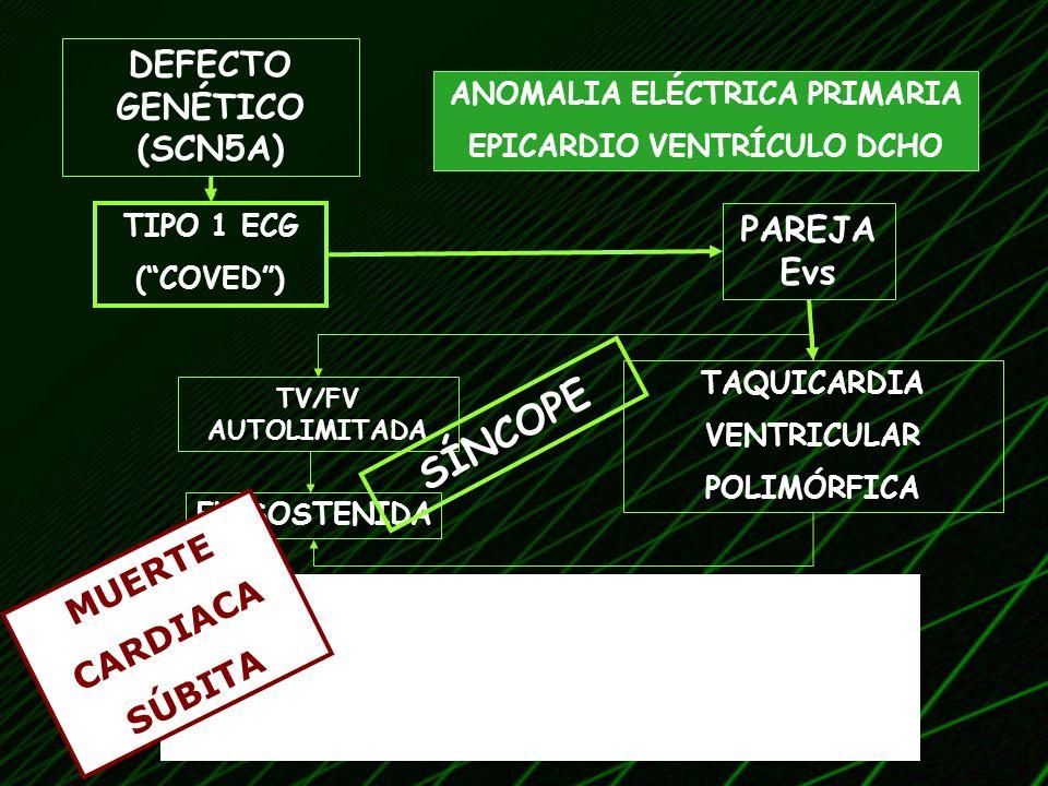 SÍNCOPE DEFECTO GENÉTICO (SCN5A) PAREJA Evs MUERTE CARDIACA SÚBITA