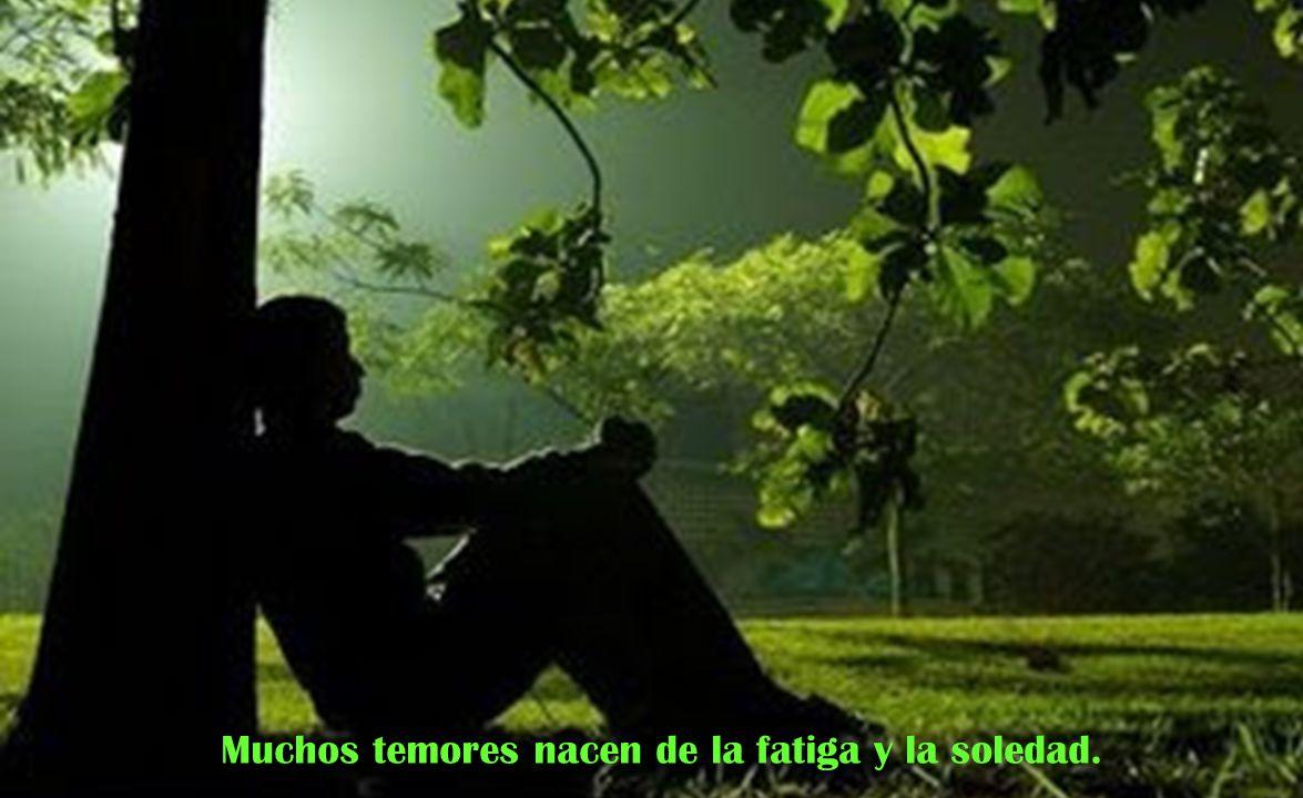 Muchos temores nacen de la fatiga y la soledad.