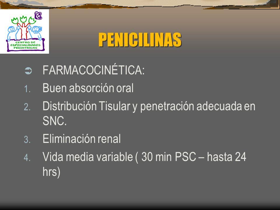 PENICILINAS FARMACOCINÉTICA: Buen absorción oral
