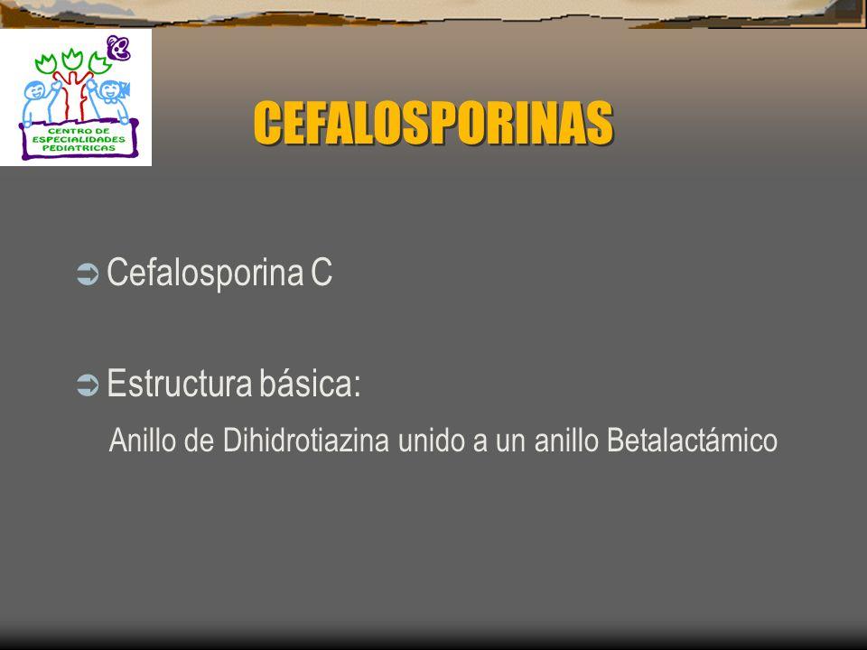 CEFALOSPORINAS Cefalosporina C Estructura básica: