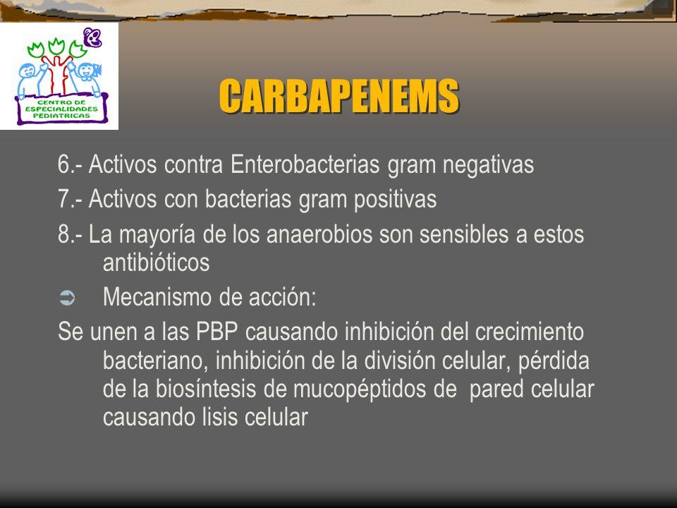 CARBAPENEMS 6.- Activos contra Enterobacterias gram negativas