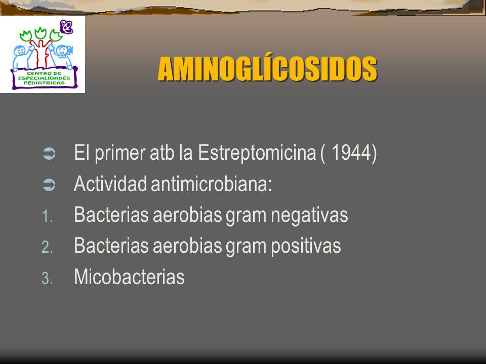 AMINOGLÍCOSIDOS El primer atb la Estreptomicina ( 1944)