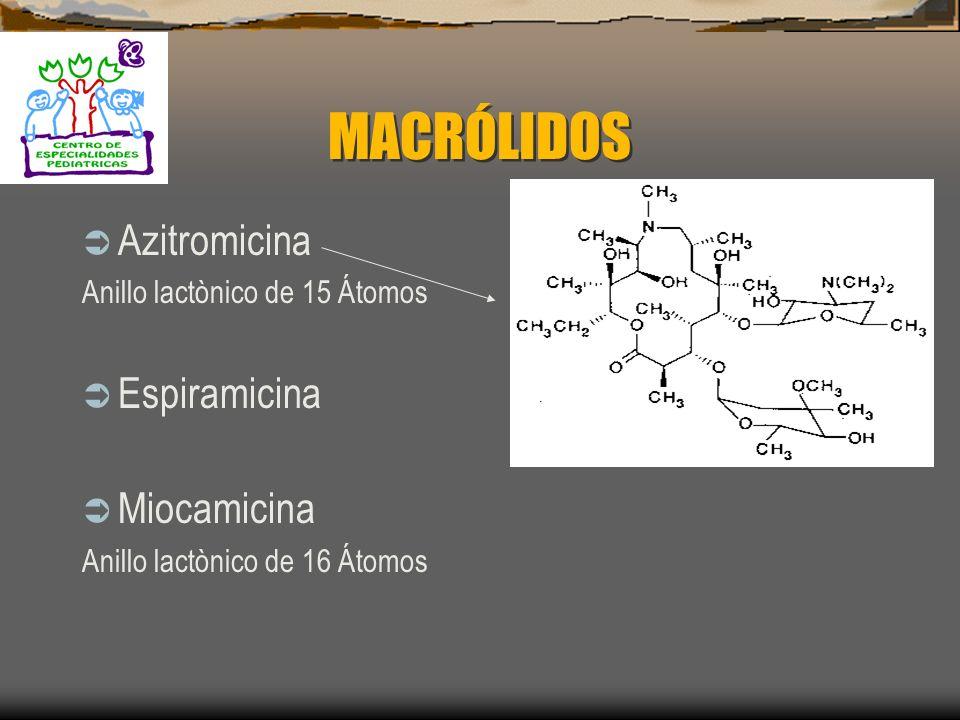 MACRÓLIDOS Azitromicina Espiramicina Miocamicina