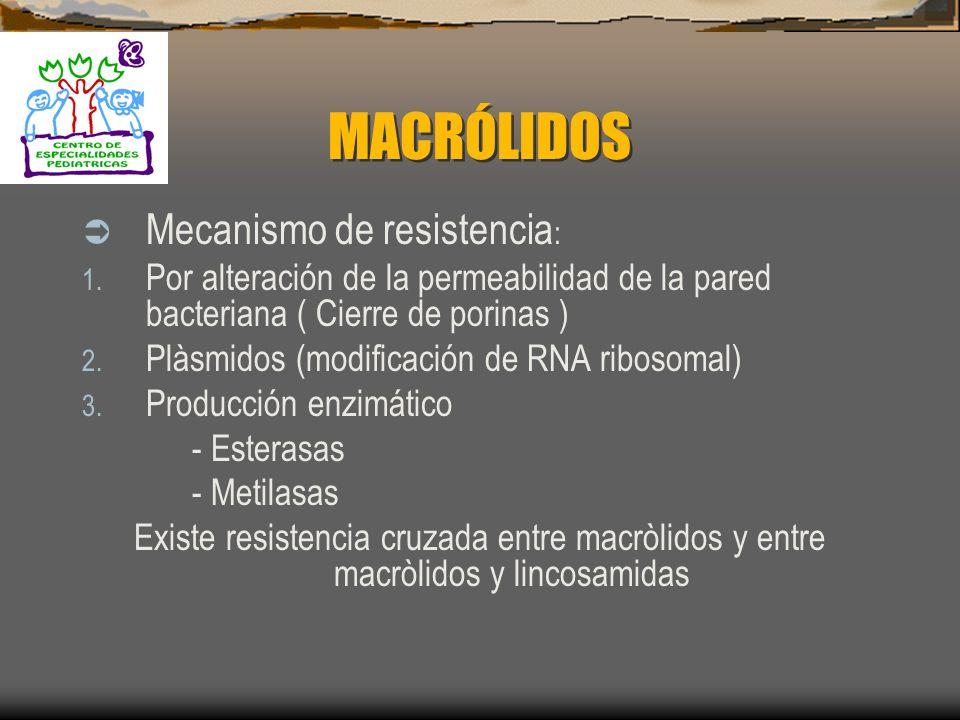 MACRÓLIDOS Mecanismo de resistencia: