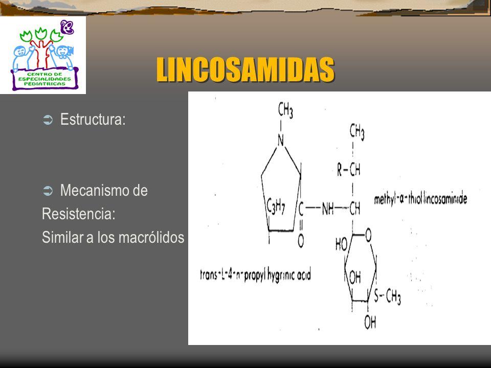 LINCOSAMIDAS Estructura: Mecanismo de Resistencia: