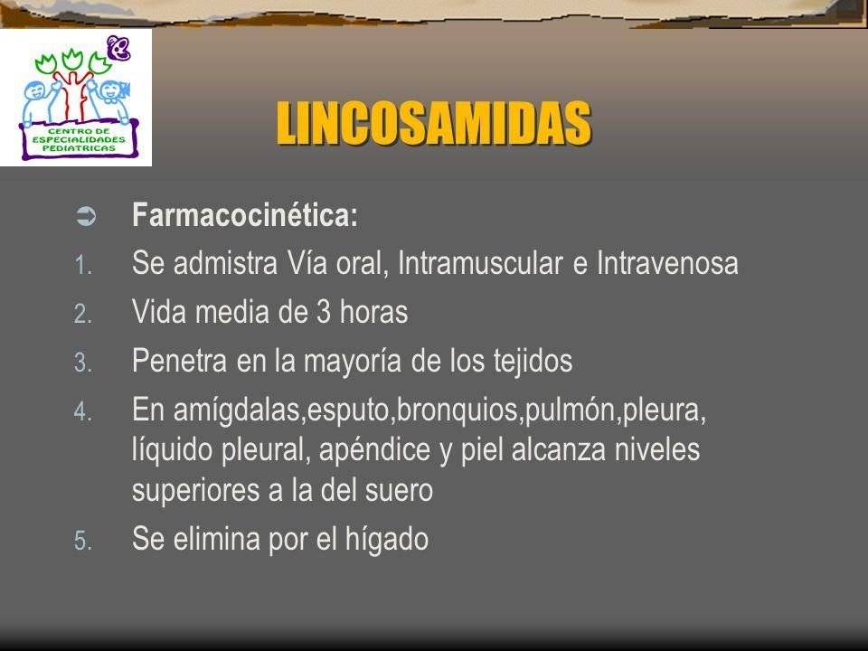 LINCOSAMIDAS Farmacocinética: