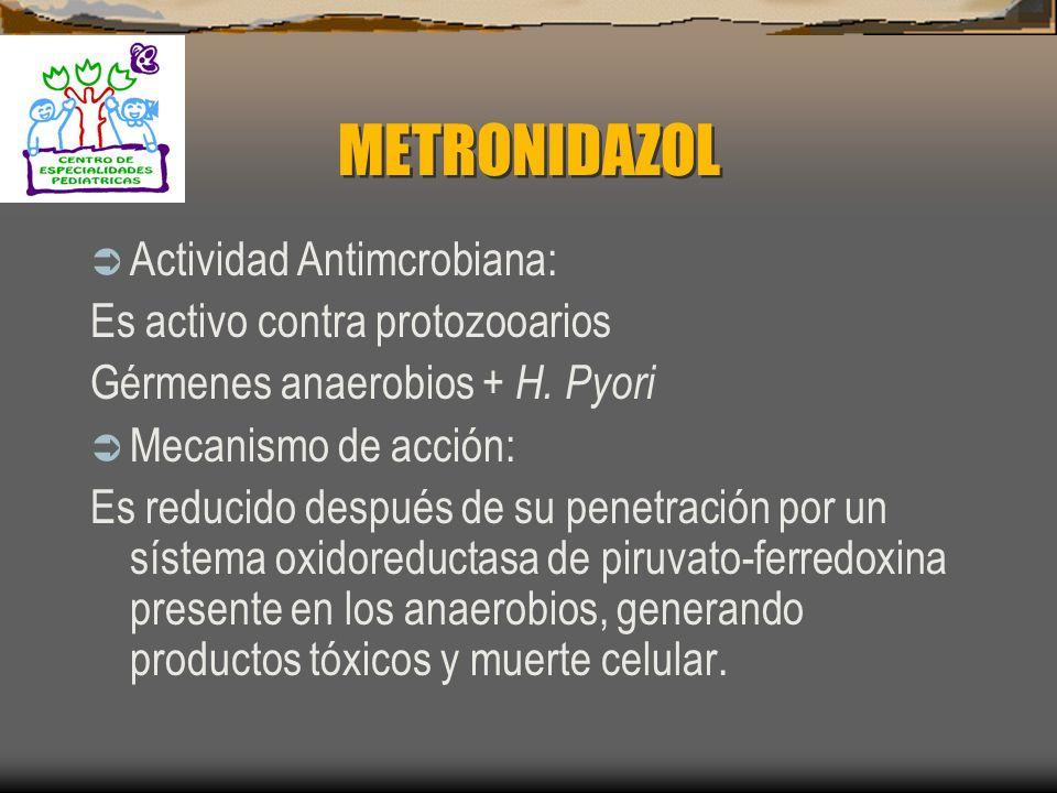 METRONIDAZOL Actividad Antimcrobiana: Es activo contra protozooarios