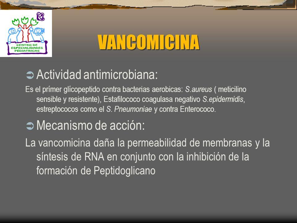 VANCOMICINA Actividad antimicrobiana: Mecanismo de acción: