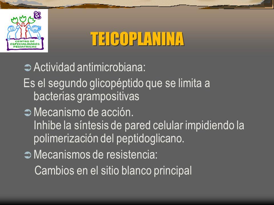 TEICOPLANINA Actividad antimicrobiana: