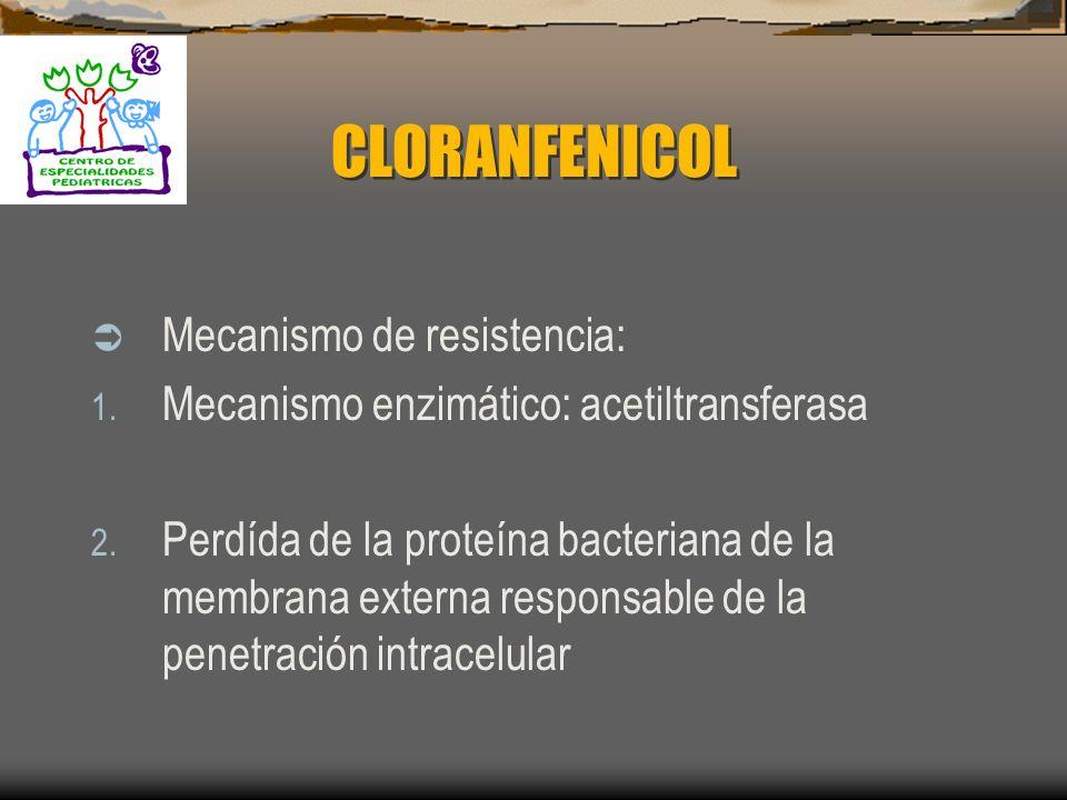 CLORANFENICOL Mecanismo de resistencia: