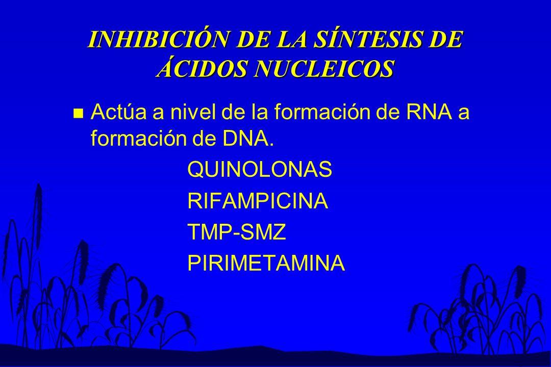 INHIBICIÓN DE LA SÍNTESIS DE ÁCIDOS NUCLEICOS