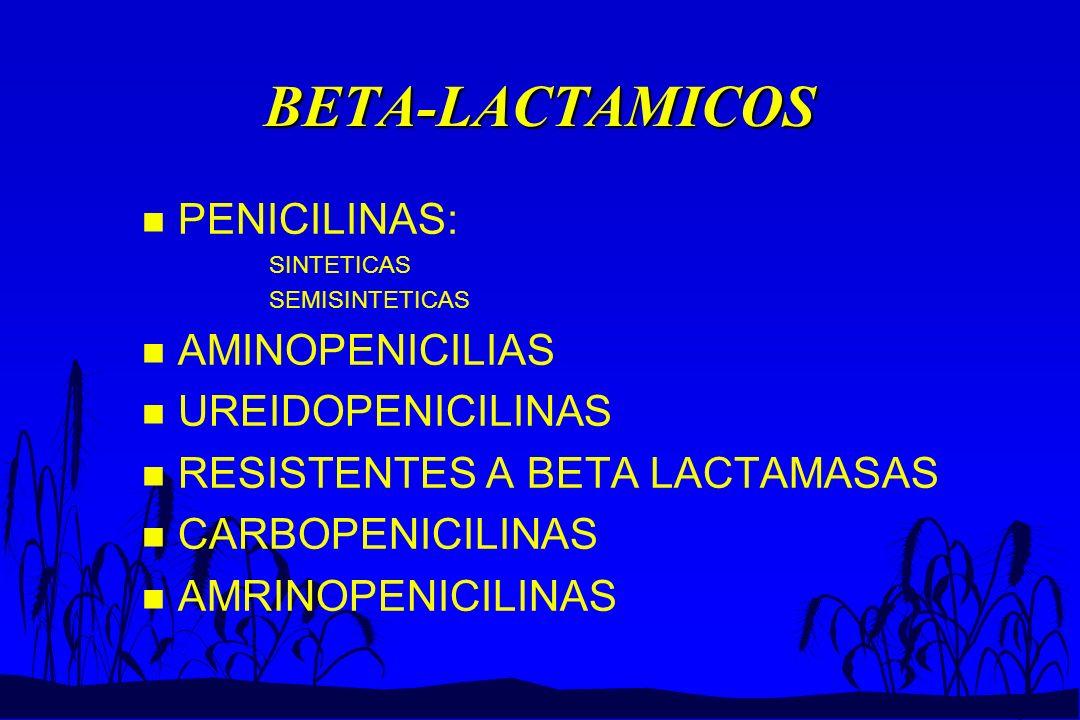 BETA-LACTAMICOS PENICILINAS: AMINOPENICILIAS UREIDOPENICILINAS