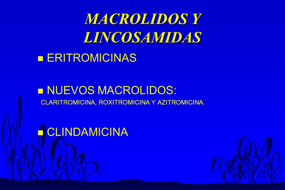 MACROLIDOS Y LINCOSAMIDAS