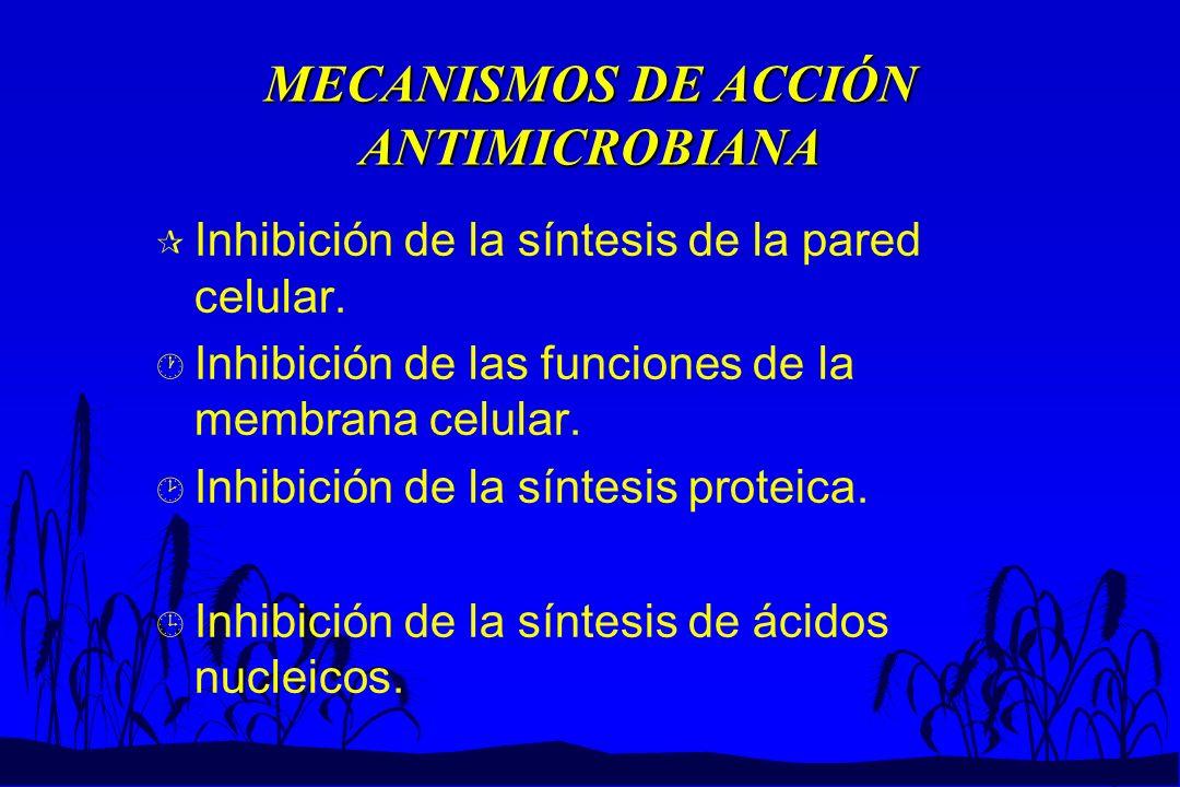 MECANISMOS DE ACCIÓN ANTIMICROBIANA
