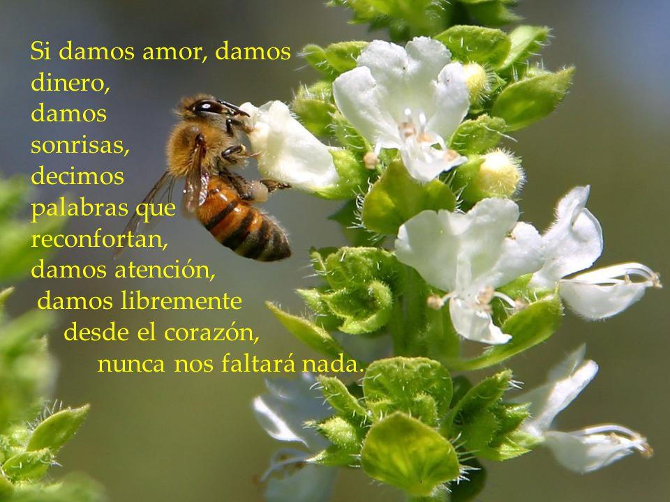 Si damos amor, damos dinero, damos. sonrisas, decimos. palabras que. reconfortan, damos atención,