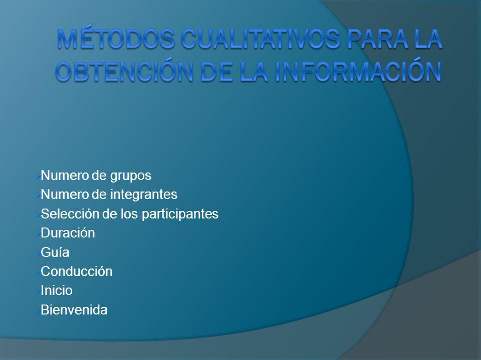 Métodos cualitativos para la obtención de la información