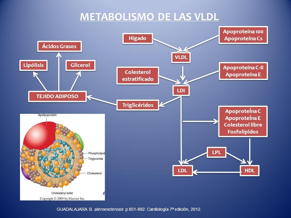 Colesterol estratificado