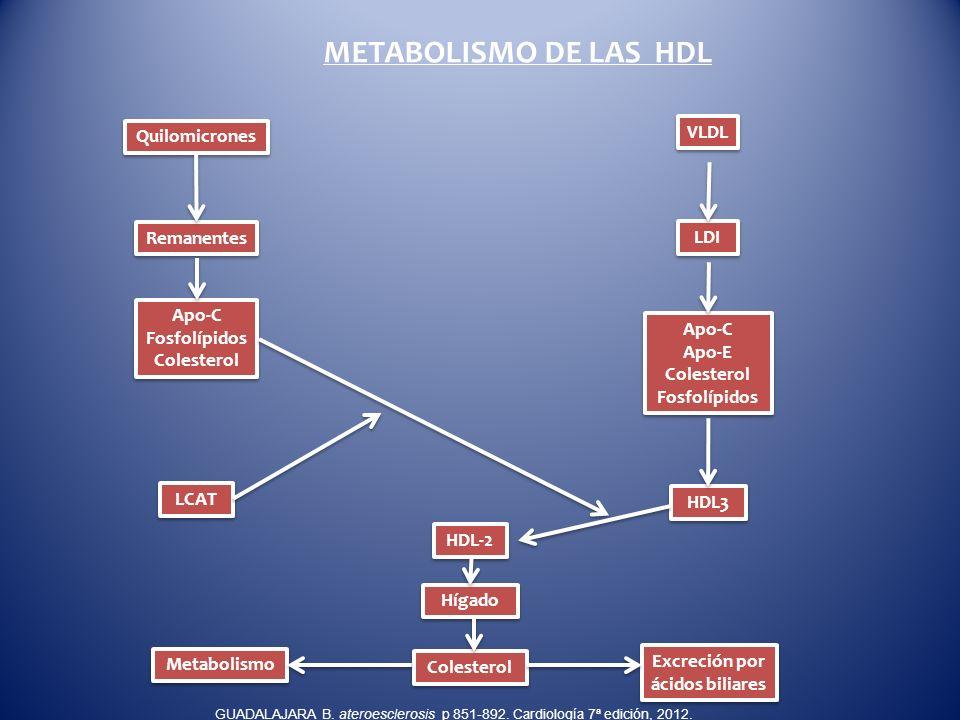 Excreción por ácidos biliares