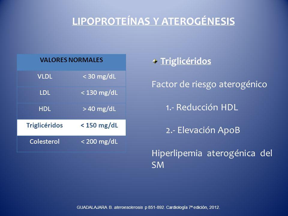 LIPOPROTEÍNAS Y ATEROGÉNESIS