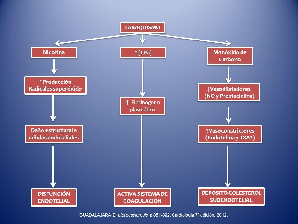 ↑Producción Radicales superóxido ↓Vasodilatadores (NO y Prostaciclina)