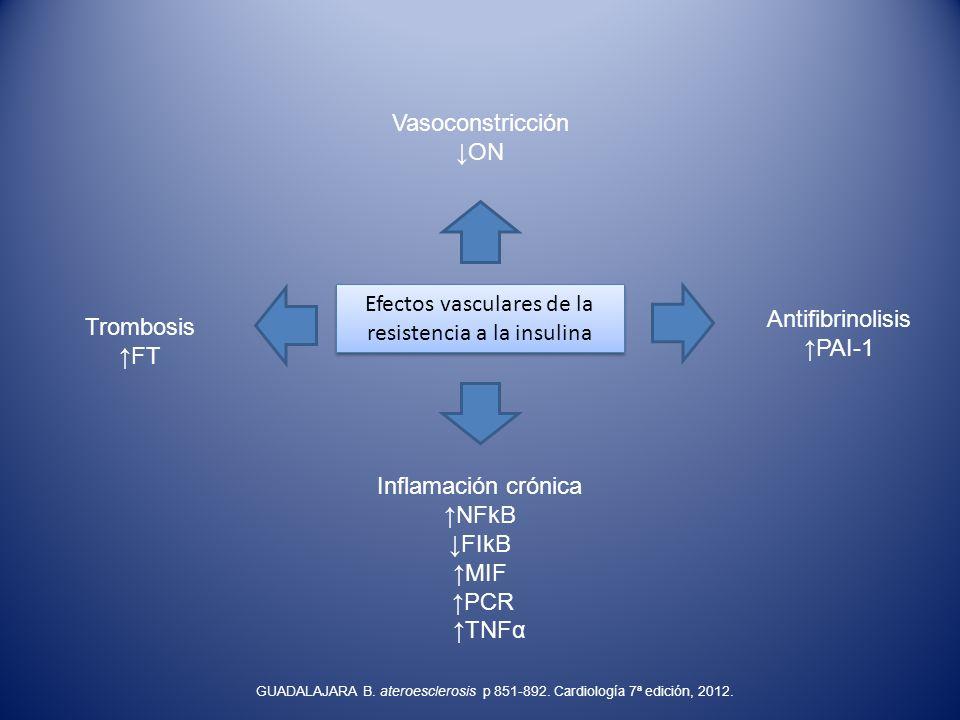 Efectos vasculares de la resistencia a la insulina
