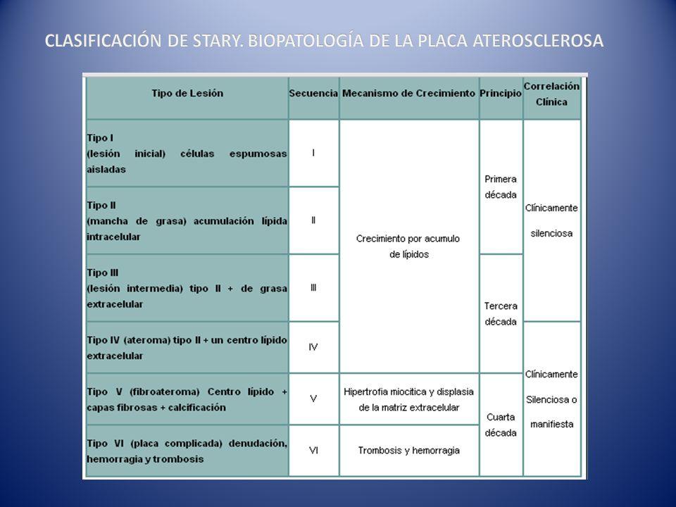 CLASIFICACIÓN DE STARY. BIOPATOLOGÍA DE LA PLACA ATEROSCLEROSA