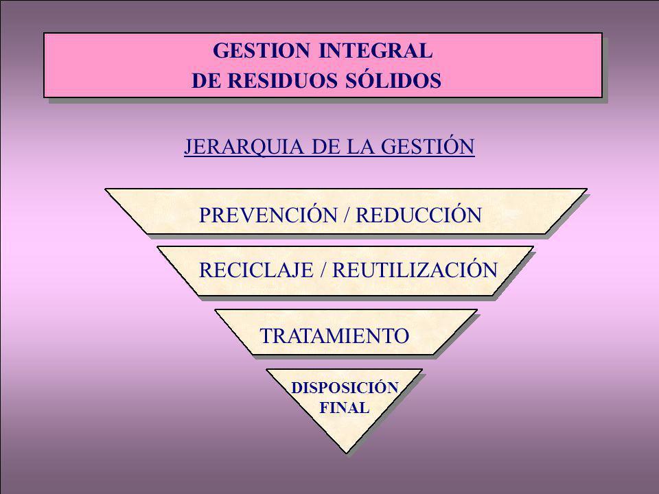 JERARQUIA DE LA GESTIÓN