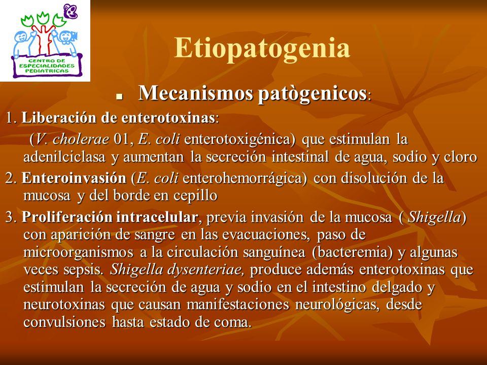 Mecanismos patògenicos: