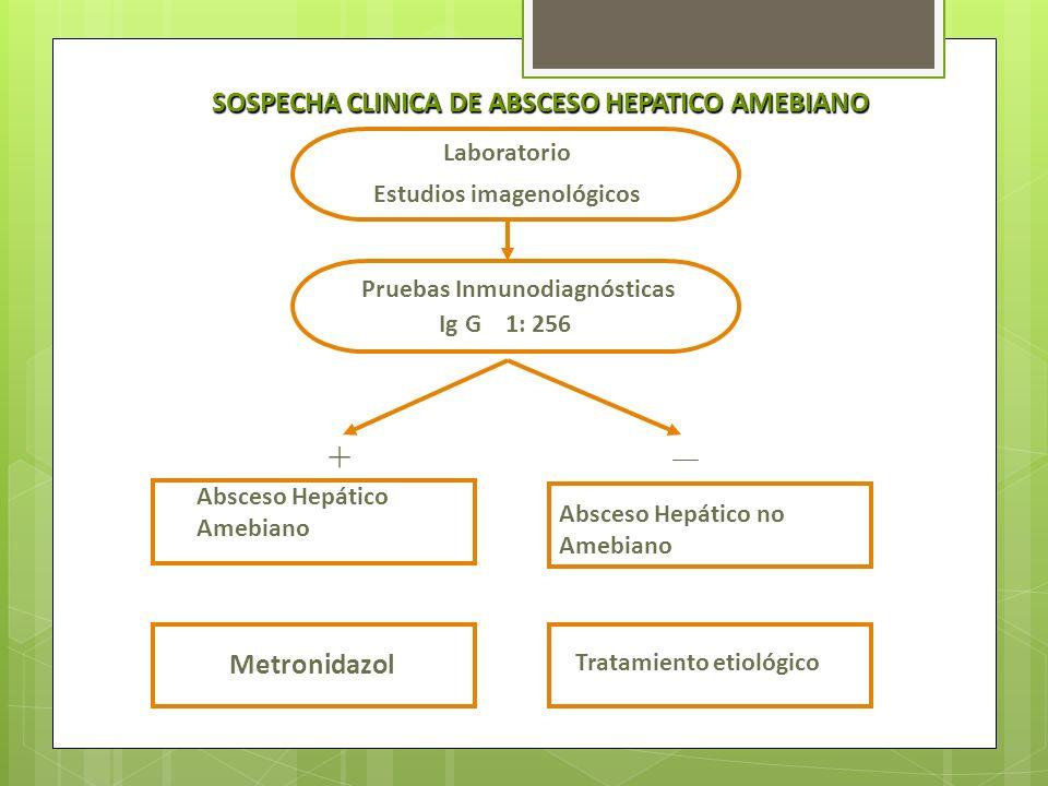 SOSPECHA CLINICA DE ABSCESO HEPATICO AMEBIANO Estudios imagenológicos