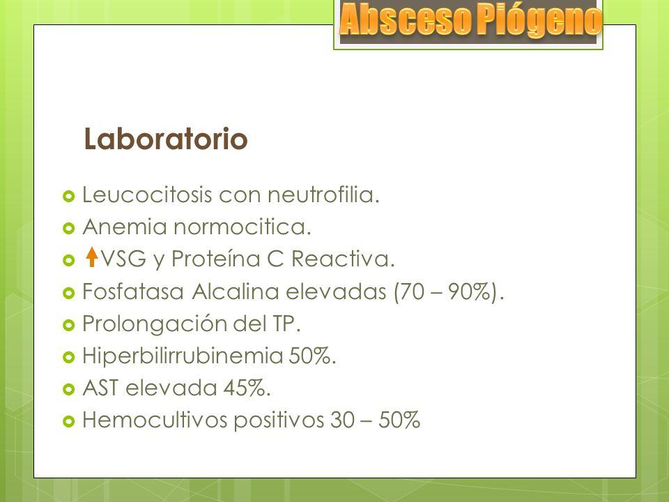 Absceso Piógeno Laboratorio Leucocitosis con neutrofilia.