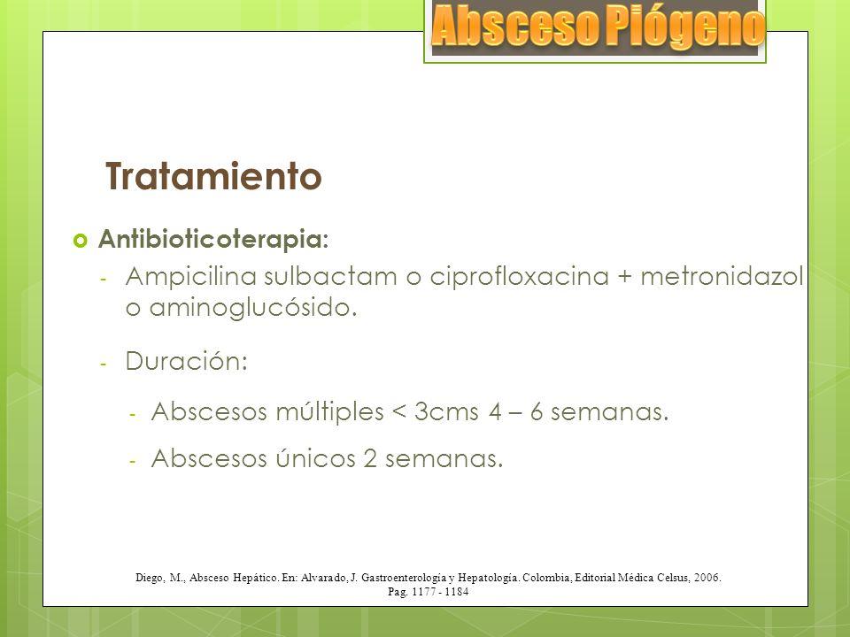 Absceso Piógeno Tratamiento Antibioticoterapia: