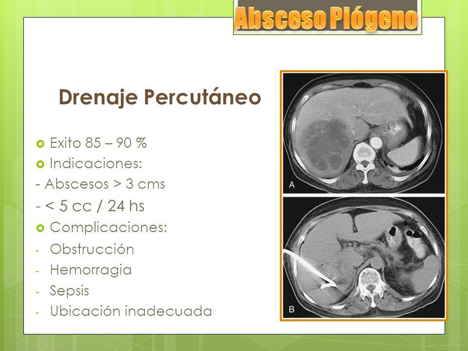 Absceso Piógeno Drenaje Percutáneo - < 5 cc / 24 hs Exito 85 – 90 %