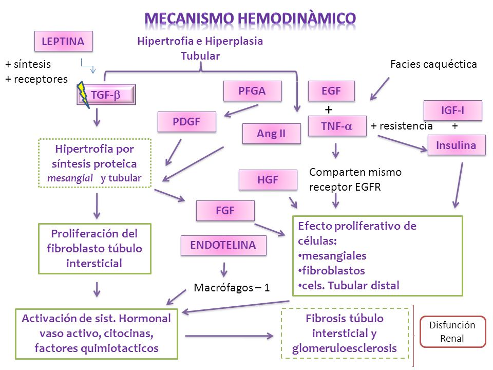 MECANISMO HEMODINÀMICO