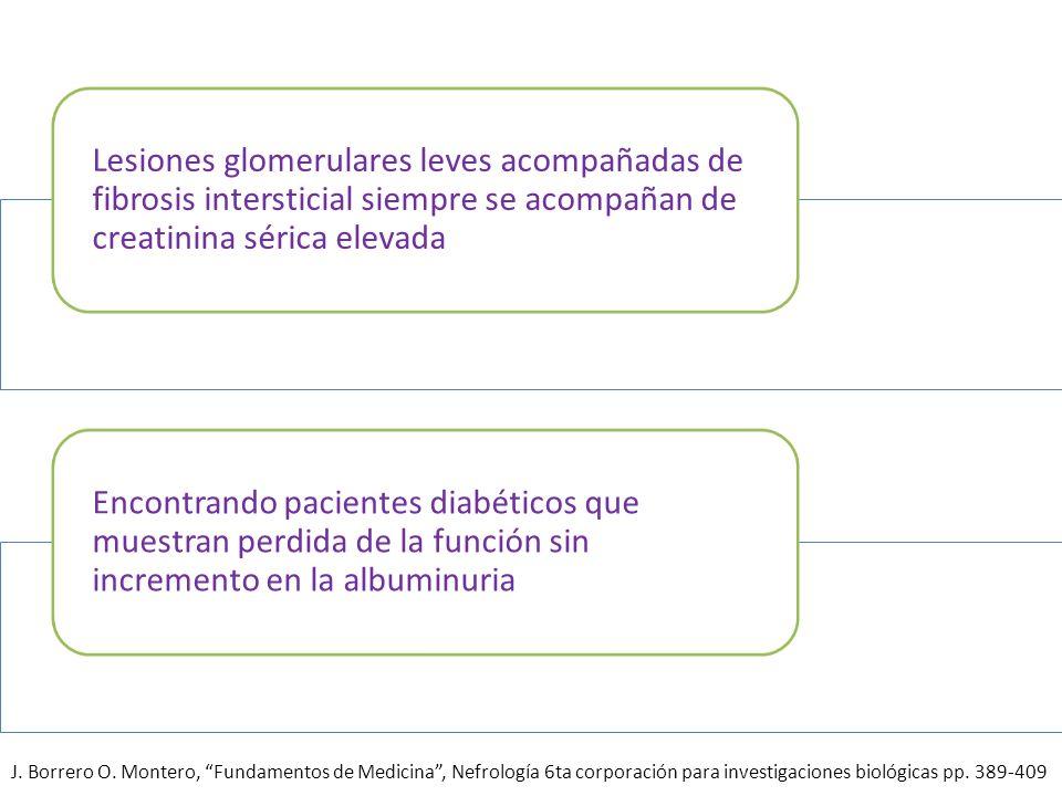Lesiones glomerulares leves acompañadas de fibrosis intersticial siempre se acompañan de creatinina sérica elevada