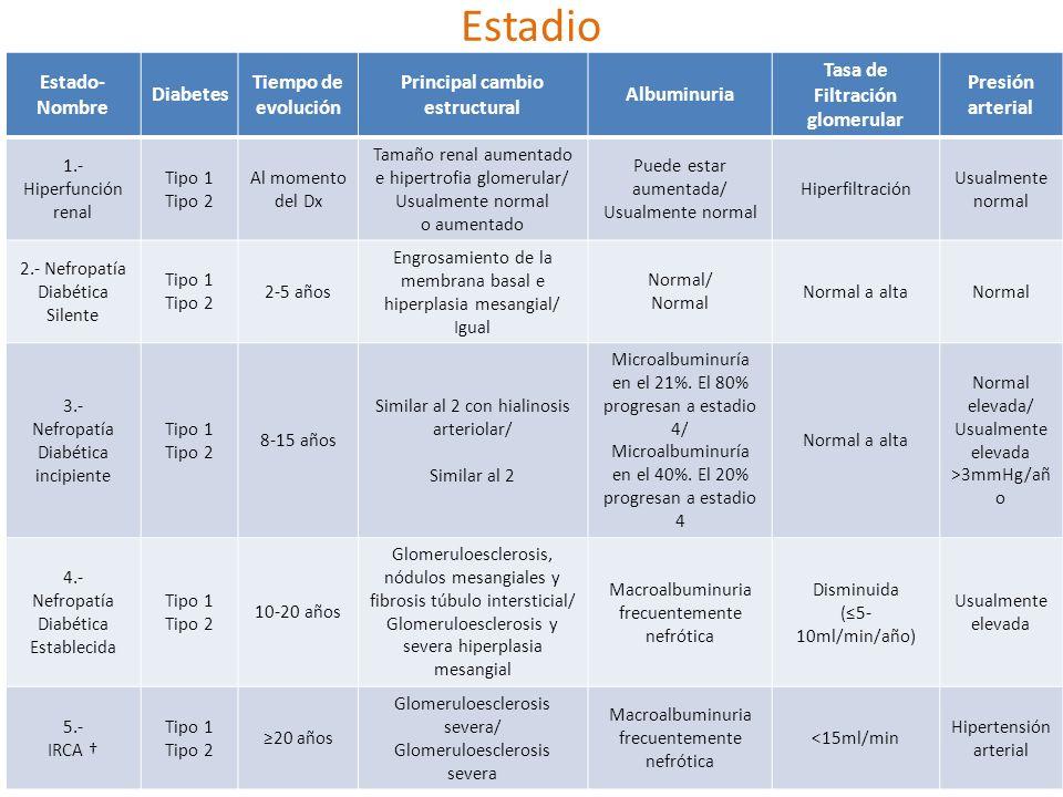 Principal cambio estructural Tasa de Filtración glomerular