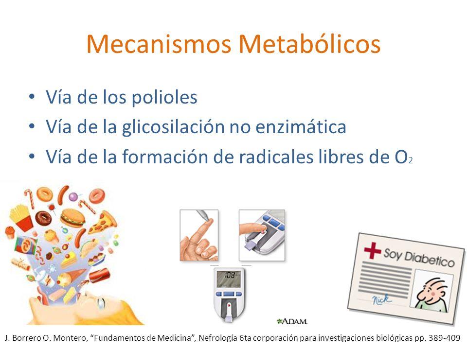 Mecanismos Metabólicos