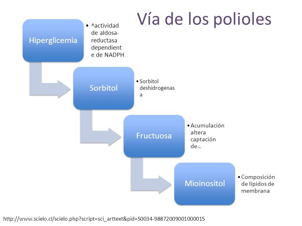 Vía de los polioles Hiperglicemia Sorbitol Fructuosa Mioinositol