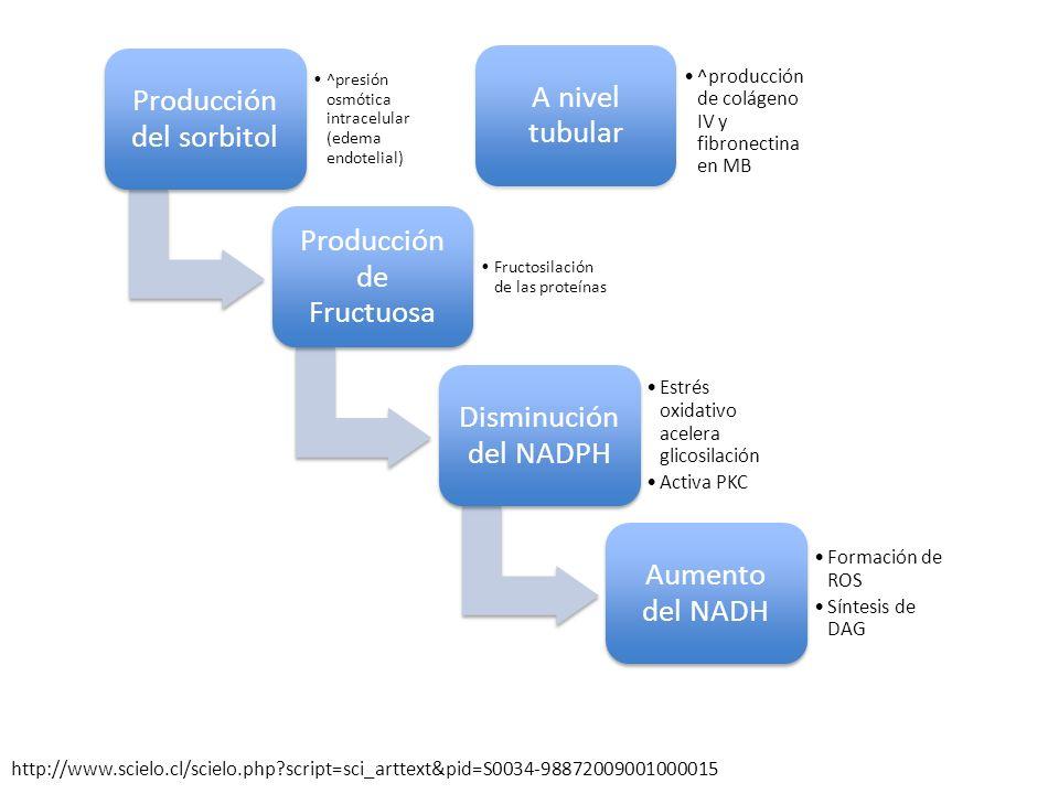 Producción del sorbitol