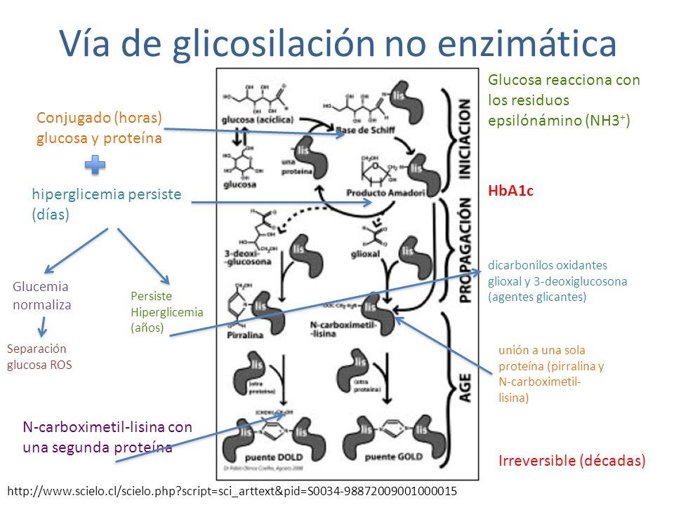 Vía de glicosilación no enzimática