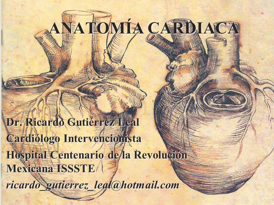 ANATOMÍA CARDIACA Dr. Ricardo Gutiérrez Leal