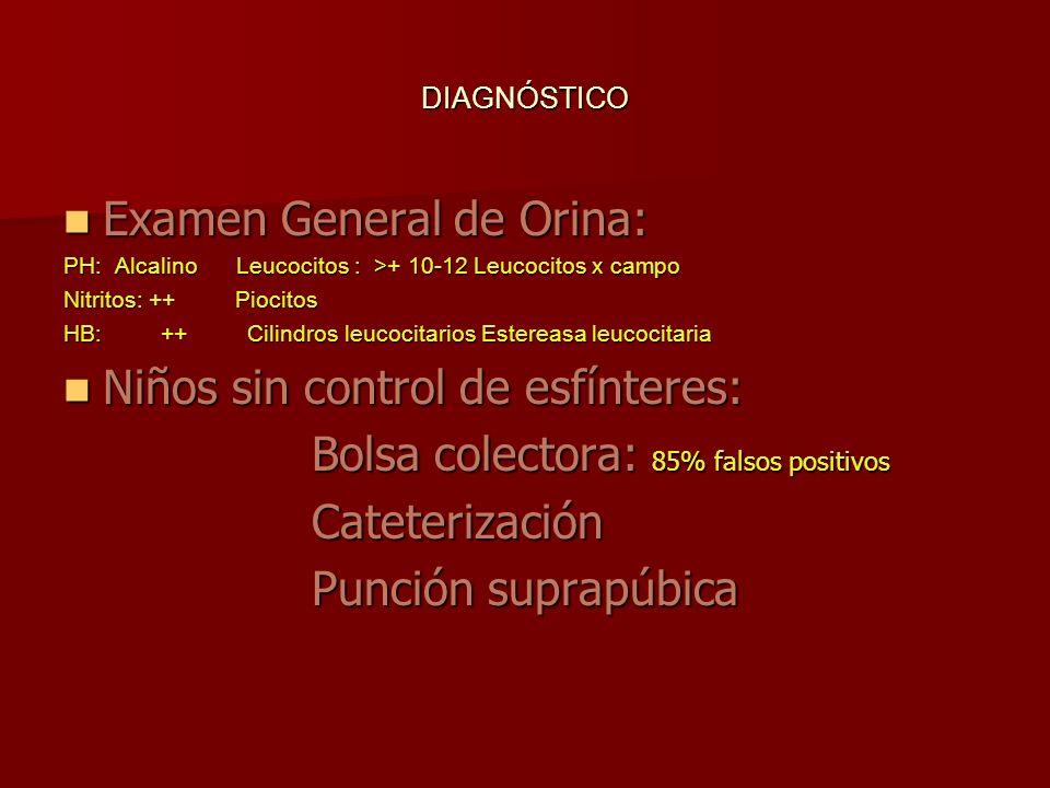 Examen General de Orina: