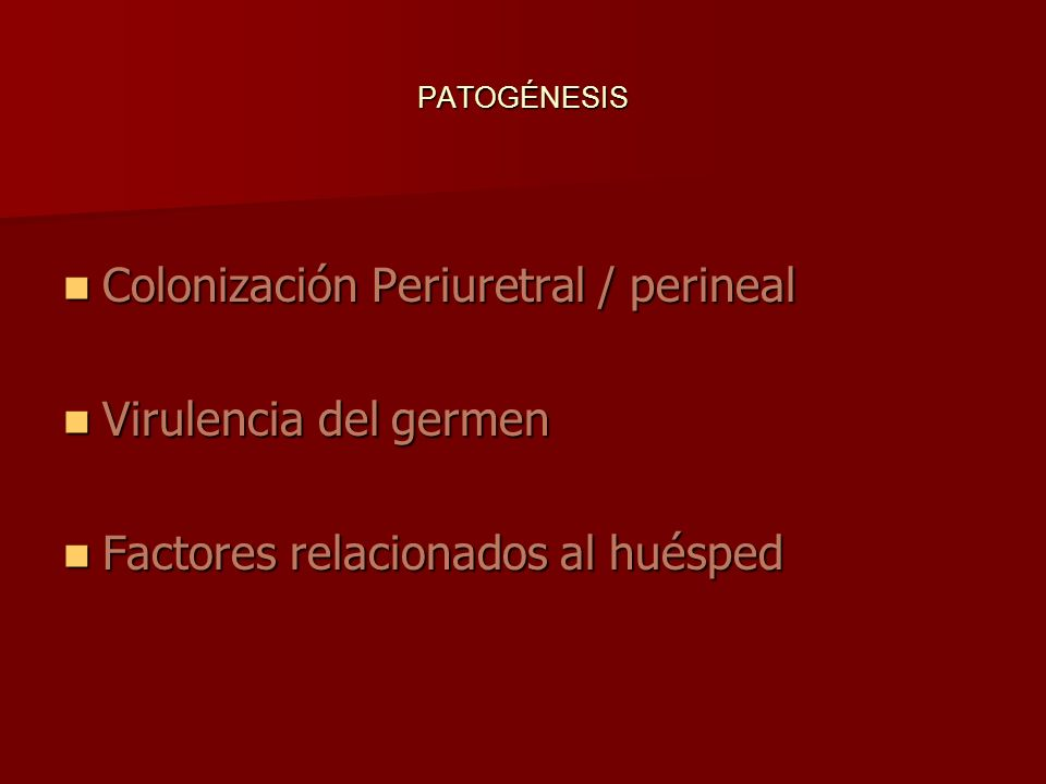 Colonización Periuretral / perineal