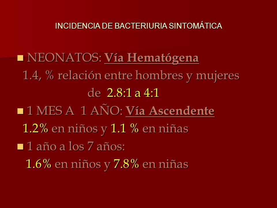 NEONATOS: Vía Hematógena