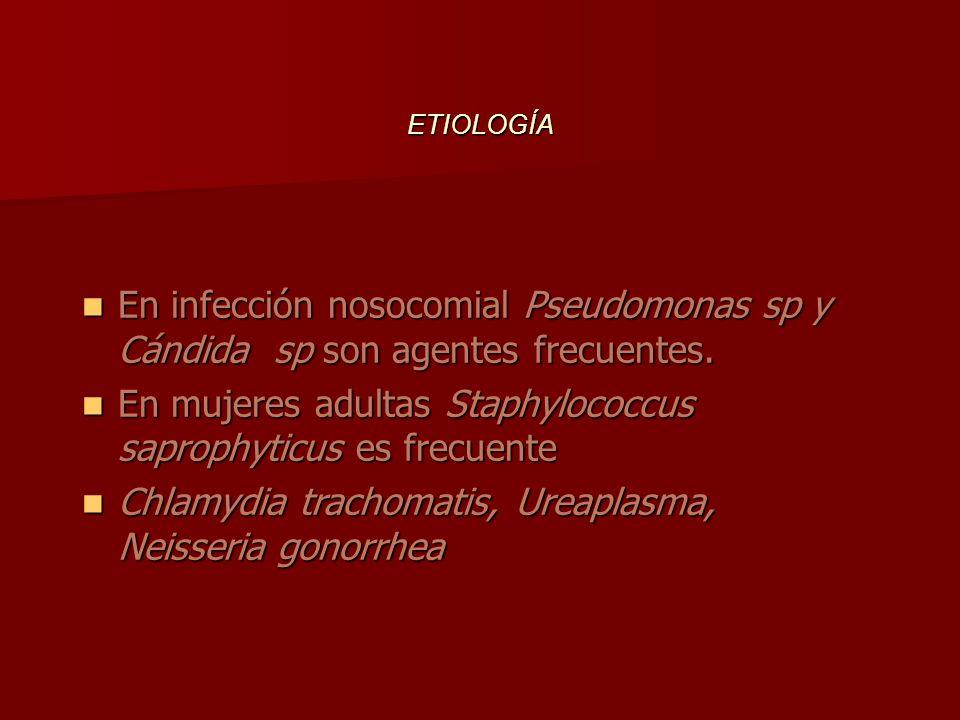 En infección nosocomial Pseudomonas sp y Cándida sp son agentes frecuentes.