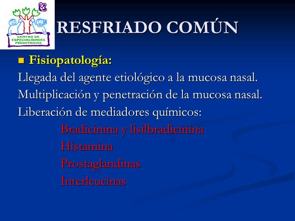 RESFRIADO COMÚN Fisiopatología: